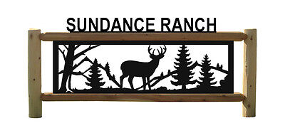WHITETAIL DEER SIGN - HUNTING