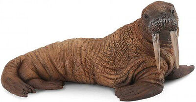 WALRUS - Sealife Model by CollectA 88569 *New with tag*