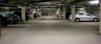 Underground Parking For Rent (High Park)