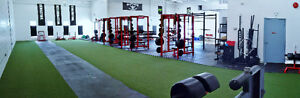 Enjoy Pre Christmas Training at Powerhouse London Ontario image 3