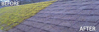 Moss Removal, Roof Maintenance, Name It 60$ and up 250 713 1859