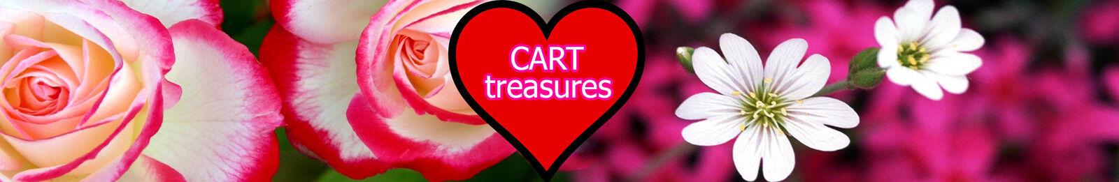 CARTtreasures