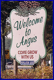 Looking for a home in Angus??