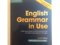 Cambridge English Grammar in use - Theory + supplementary exercises book