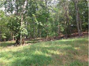 LOOKING FOR Land Wooded Lot Forest for RENT
