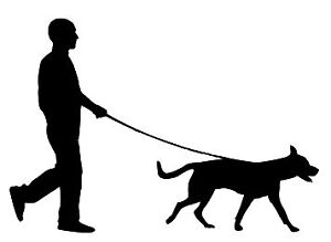 Dog Walker Services in the North End, Kildonans and St. Boniface
