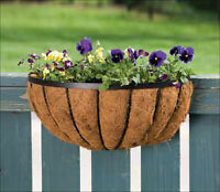Two flower/plant baskets