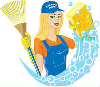 HOUSE/BUSINESS CLEANER - $20hr.  Full service cleaning available