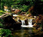 Green River Apparel