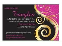 Tangles Mobile Hair Stylist & Hair Extension Technician