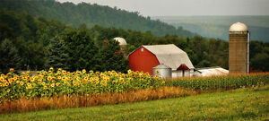 Selling your Tara area farm in the Spring?