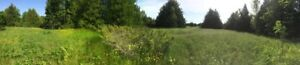 Beautiful 1 acre retreat / Rural - Residential building lot