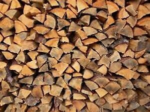 Wanted to Buy Dry Firewood