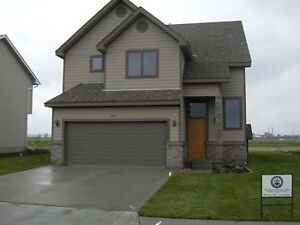 Working Professional looking for home to rent