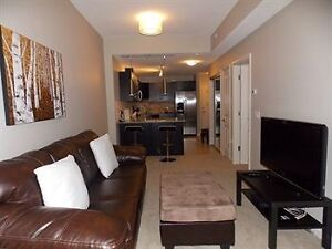 ALURA Downtown 1 Bdrm Includes Parking