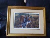 Hidden Danger (Tiger Print)