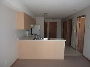 1 BD only $1025! Move in November!