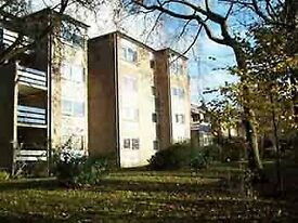 Flats available to rent at Shirley Manor Gardens - Wyke - Bradford - NO BOND