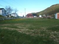 LAND FOR SALE Beach Ave. Salmon Cove, Conception Bay North