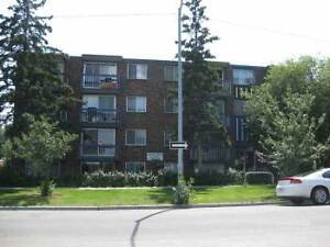 Lower Scarboro- LARGE 1BR apt only 10 min to downtown Calgary