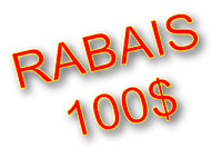 WOW! $100 OFF IF YOU CALL US TODAY! ROOF REPAIRS & INSPECTIONS