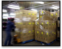 Shipping/ Receiver Floral Wholesale
