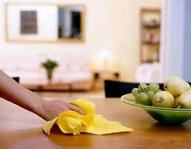 Professional cleaning/housekeeping