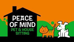 Pet & House Sitter