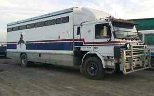 9 horse Scania Truck Colac West Colac-Otway Area Preview