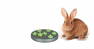 TRIXIE INTERACTIVE RABBIT SNACK TREAT BOARD TRAINING CAGE HUTCH GAME TOY 62812 ()