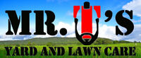 Mr. T's Yard and Lawn Care