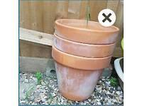 3 terracotta plant pots