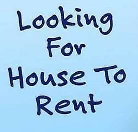 Looking for House Rental