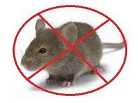 pest mice control