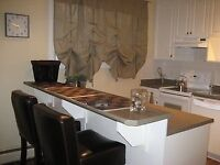 Fully furnished and equipped 1 bedroom condo