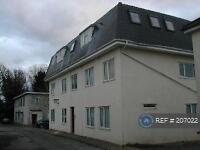 2 bedroom flat in Windsor Close, Wareham, BH20 (2 bed)