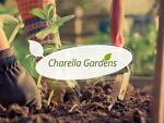charellagardens-outlet