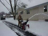 SNOW REMOVAL /MOWING /CLEANUPS