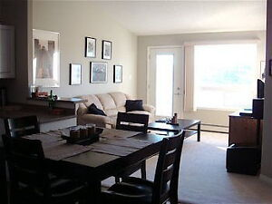 Furnished 1 Bedroom in Clareview Edmonton NE-Available September