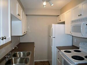 Bridlewood 1 BR SW Condo + All Utilities + 1 Parking