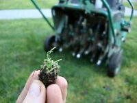 Spring aeration - book and save now!