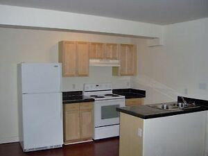 Bright  2 bdrm, pet friendly downtown condo - all utilities incl
