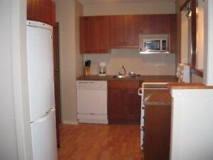 Newly renovated fully furnished 2 bedroom in great location!