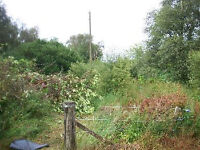 Land, Small Building Plot Required Dereham Or Surrounding Area