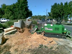 Stump Grinding Brisbane -STUMP PRO Brisbane City Brisbane North West Preview