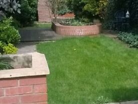 Double room in Cheshunt house