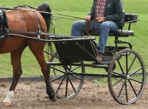 Pacific Carriage Company Cart