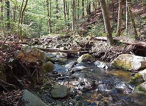 WANTED 2-10 acres of wooded land.  Must have stream, brook,