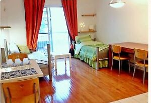 BEAUTIFUL FULLY FURNISHED APARTMENT