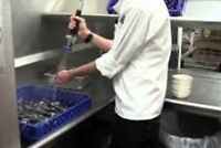 Blu Duby North requires experienced dishwashers